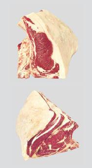 meat-rib-set-bone-in-export