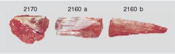 meat-tenderloin-side-strap-off-option-for-export