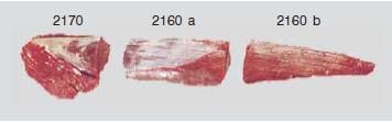 meat-tenderloin-side-strap-off-option-for-export